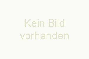 """Bild 8: Ferienhaus """"Finja"""", Urlaub mit Hund, Kamin, Zaun, - 4 P., Ostsee, Bodden"""